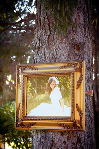 ideas for displaying pictures at the wedding