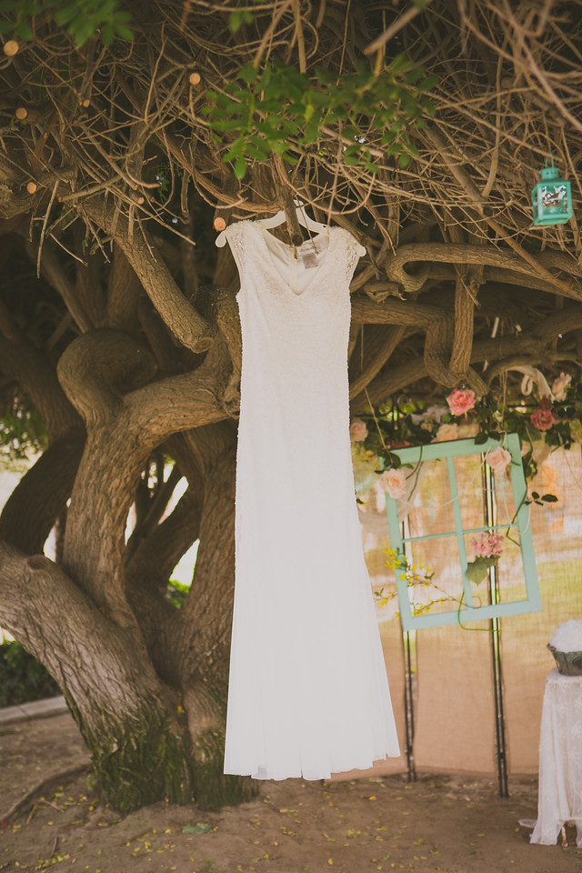 beaded wedding dress hangs from a old tree for a backyard wedding